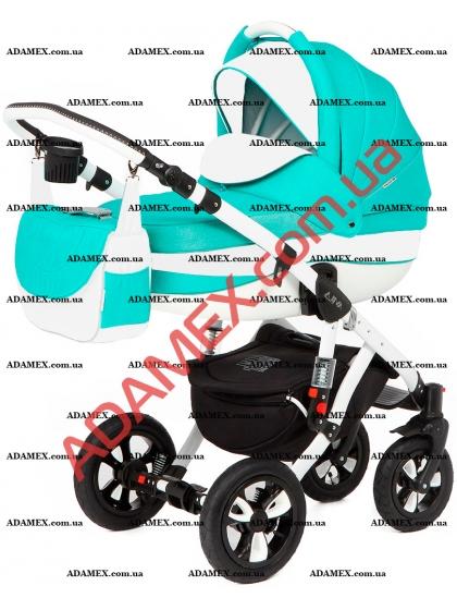 Коляска 2в1 Adamex Avila 960G